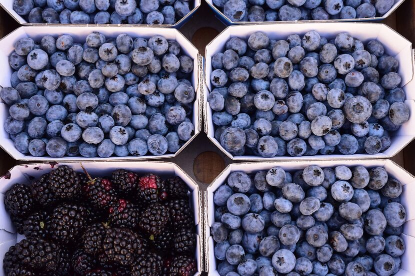 Blueberries and blackberries are great for eye health